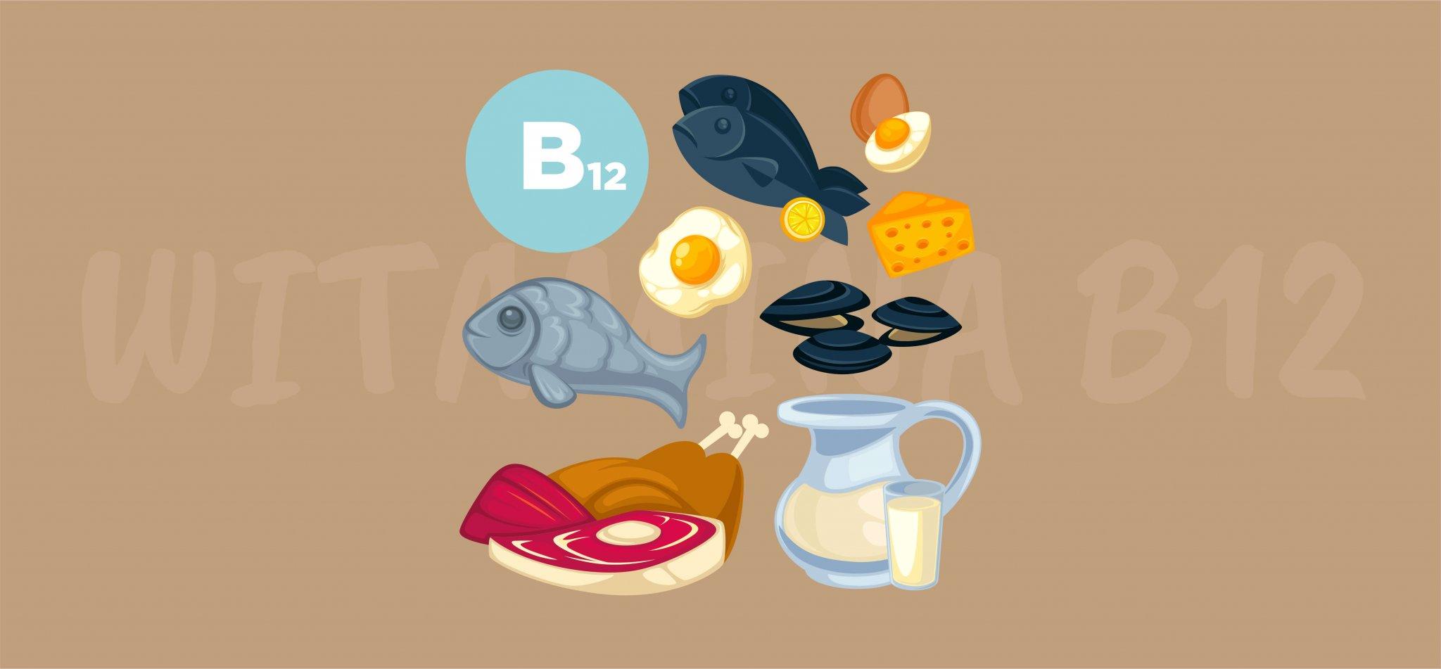 Dlaczego ważna jest witamina B12?