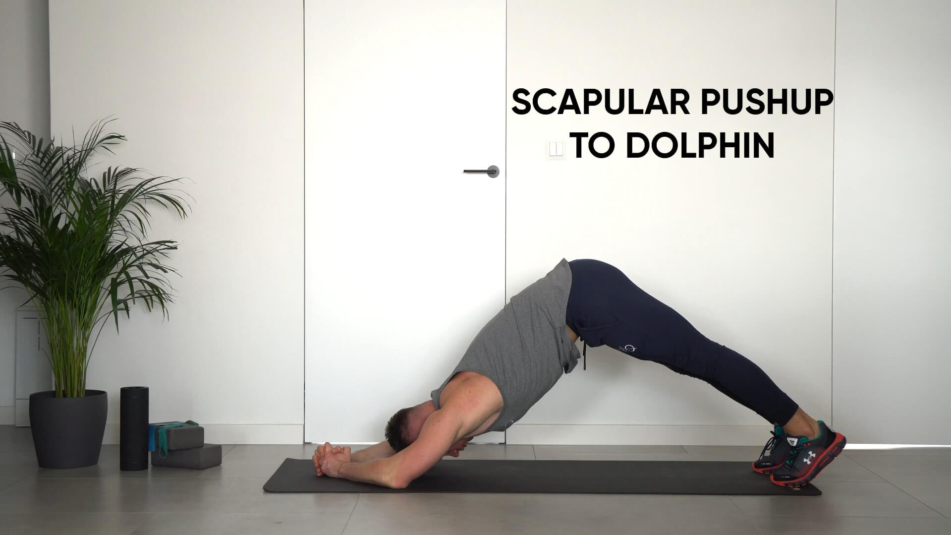 Scapular pushup to dolphin