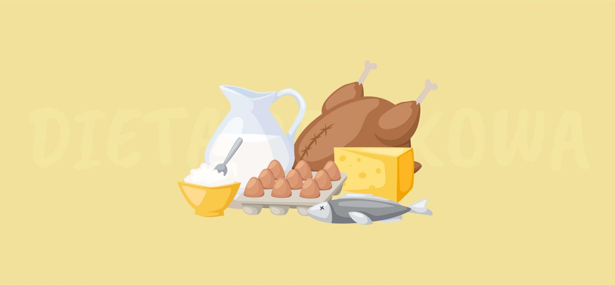 Dieta białkowa – najważniejsze informacje