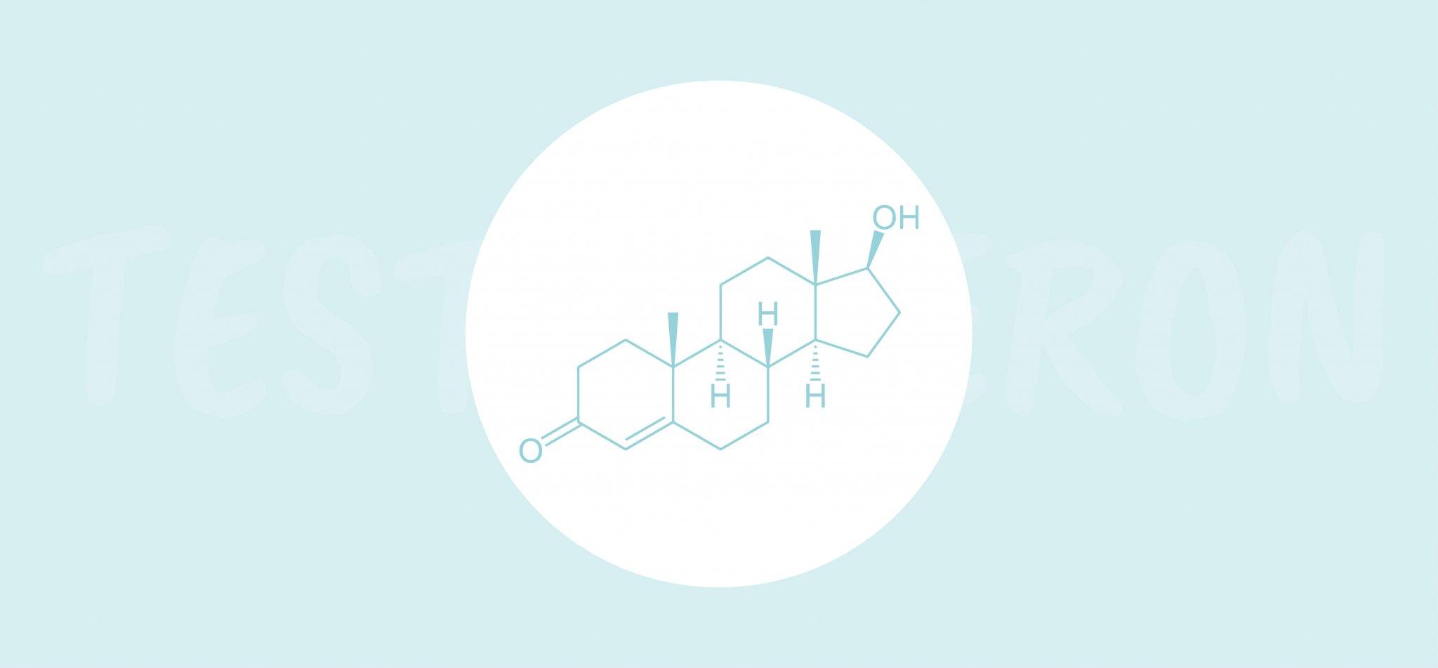 Jak podnieść poziom testosteronu?