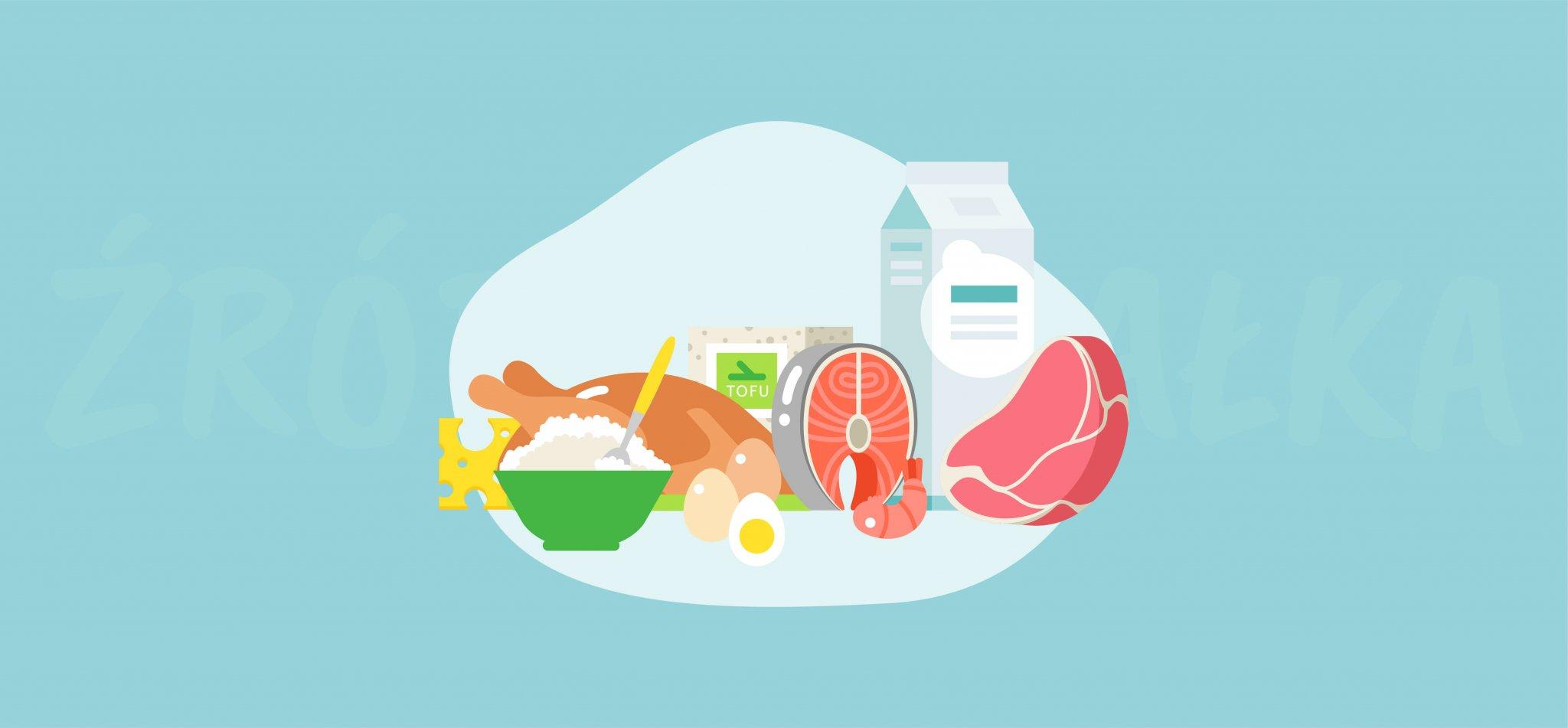 Dobre źródła makroskładników – białko