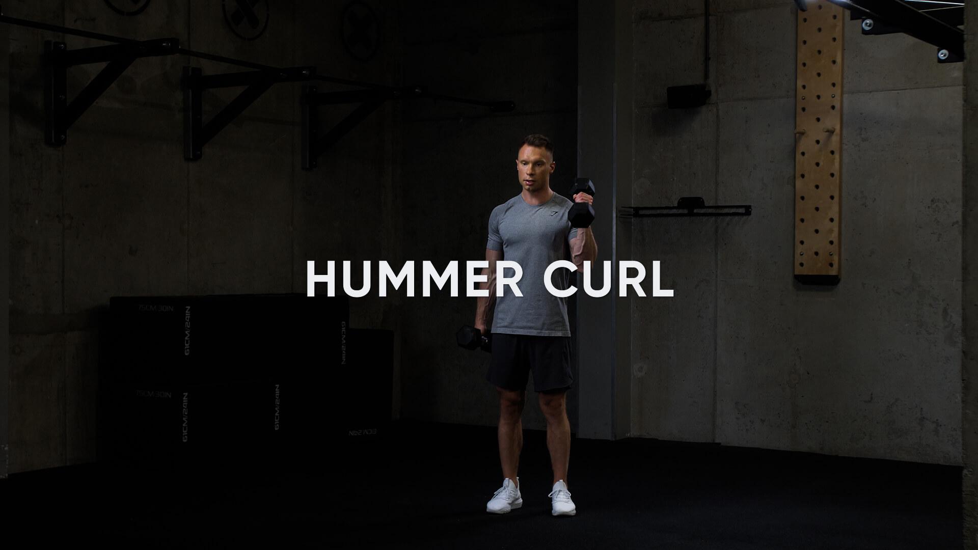Hummer Curl