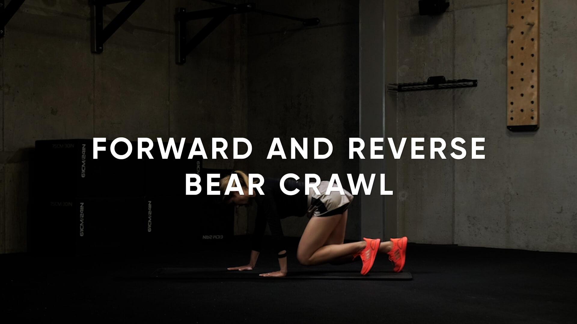 Forward and Reverse Bear Crawl