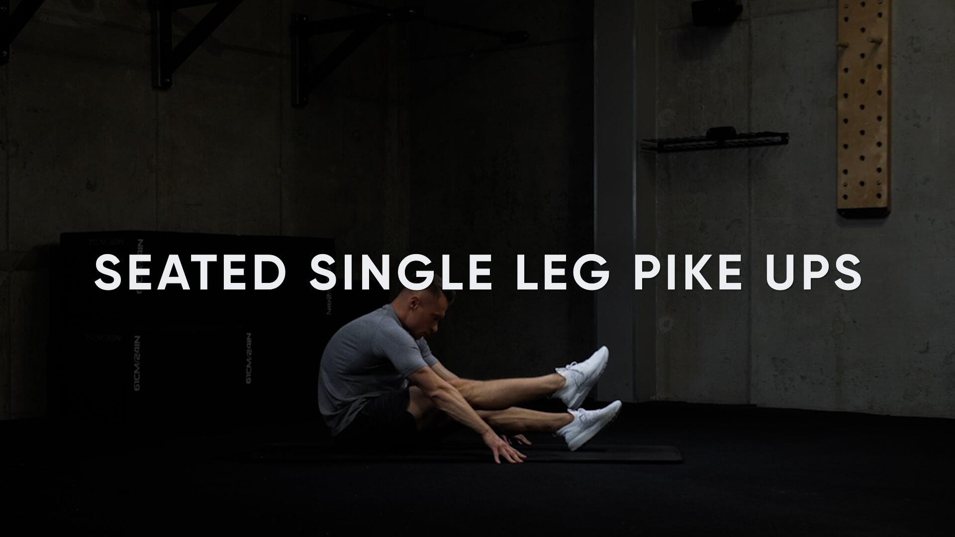 Seated Single Leg Pike Ups