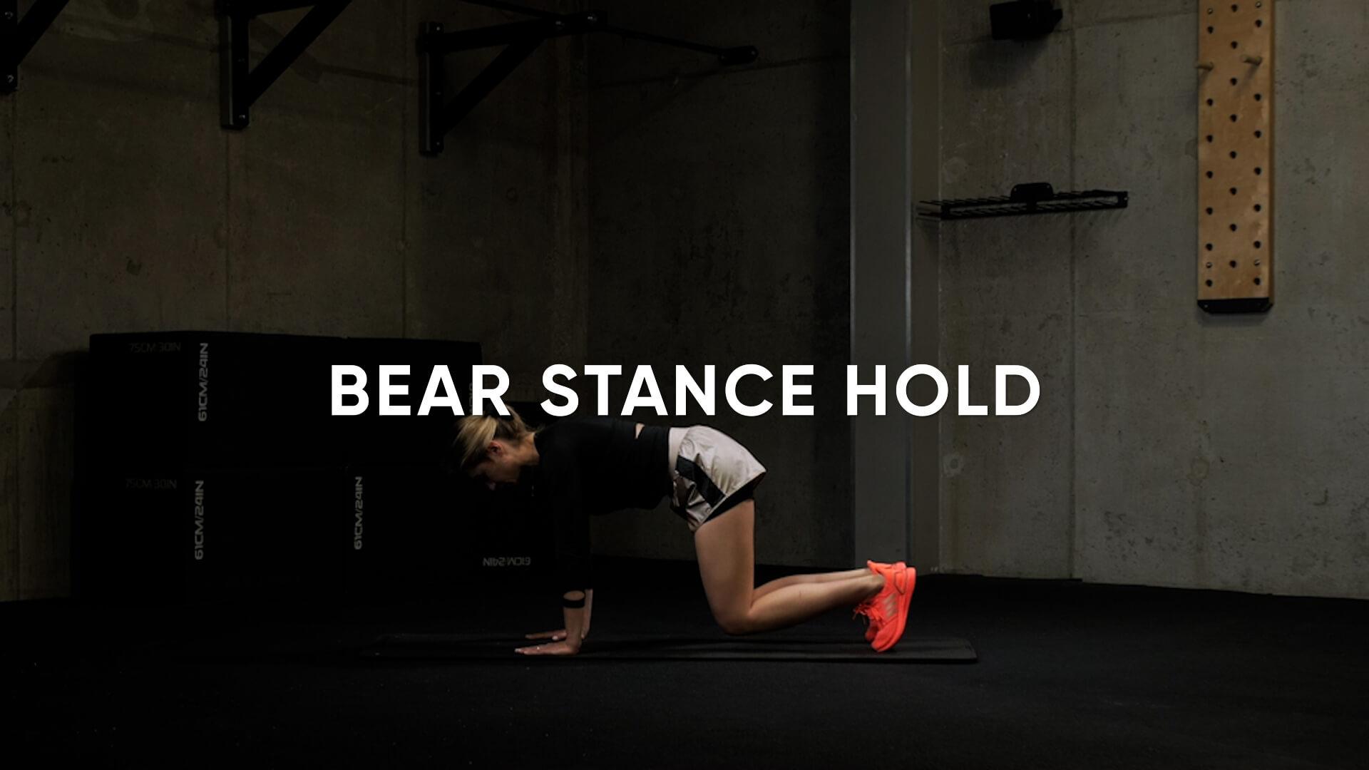 Bear Stance Hold