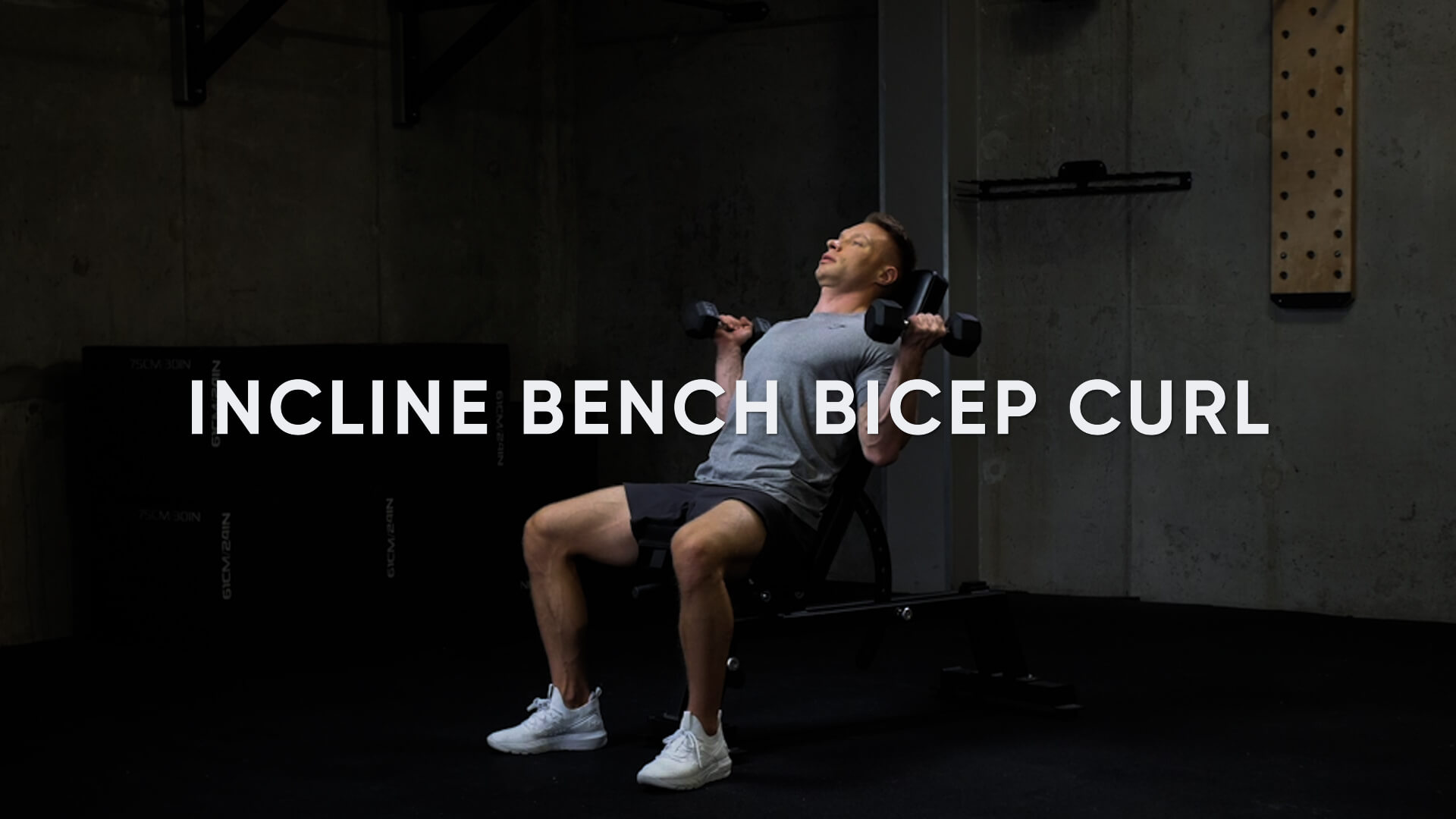 Incline Bench Bicep Curl