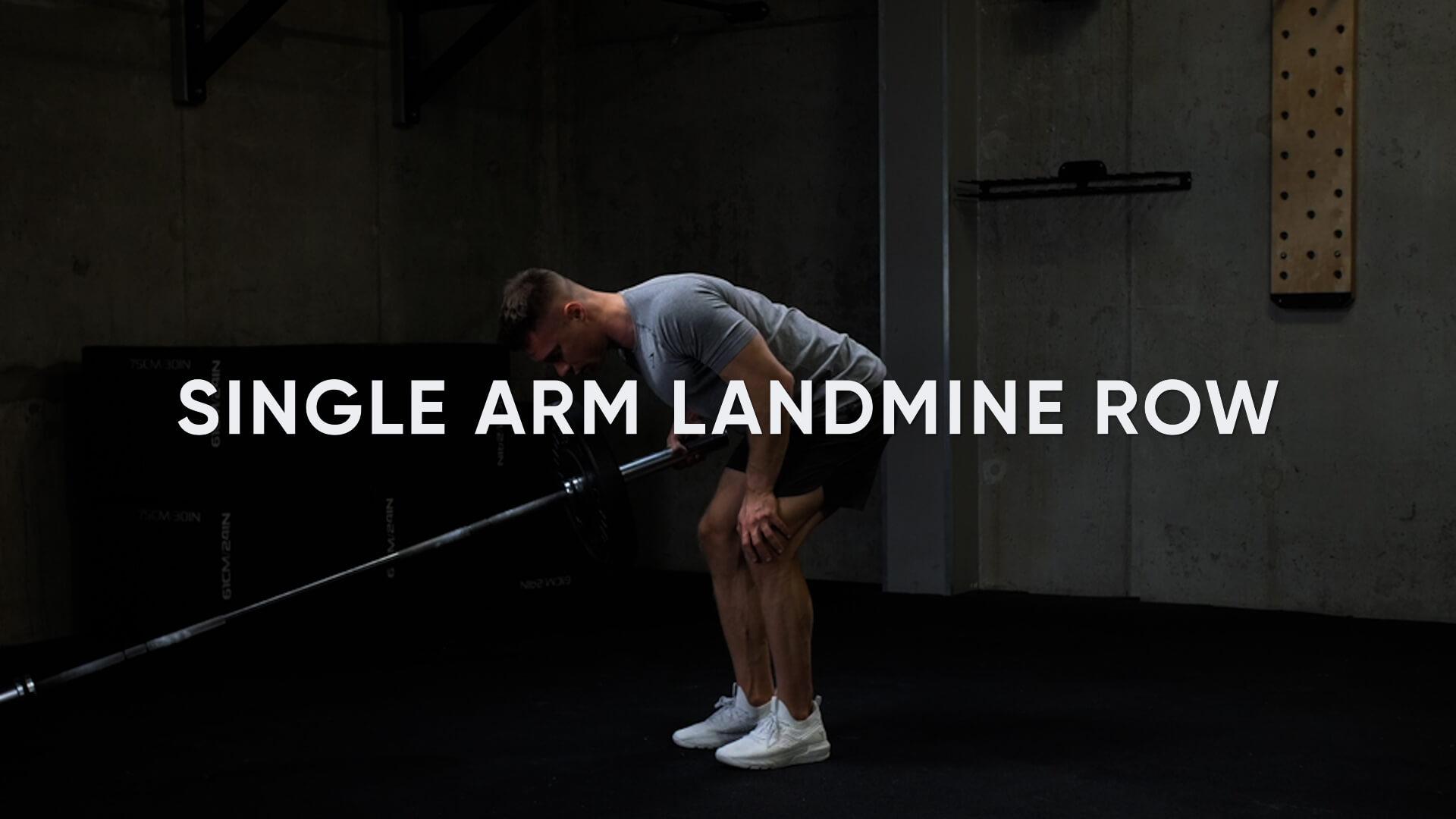 Single Arm Landmine Row
