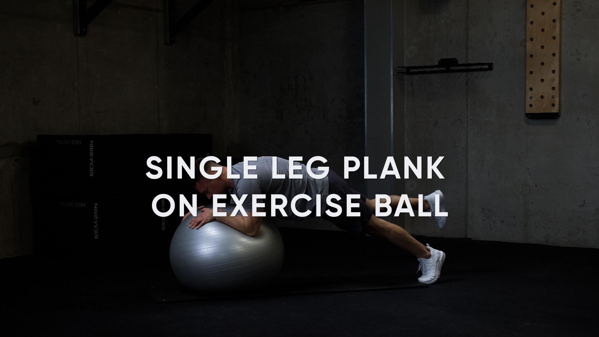 Single Leg Plank on Exercise Ball