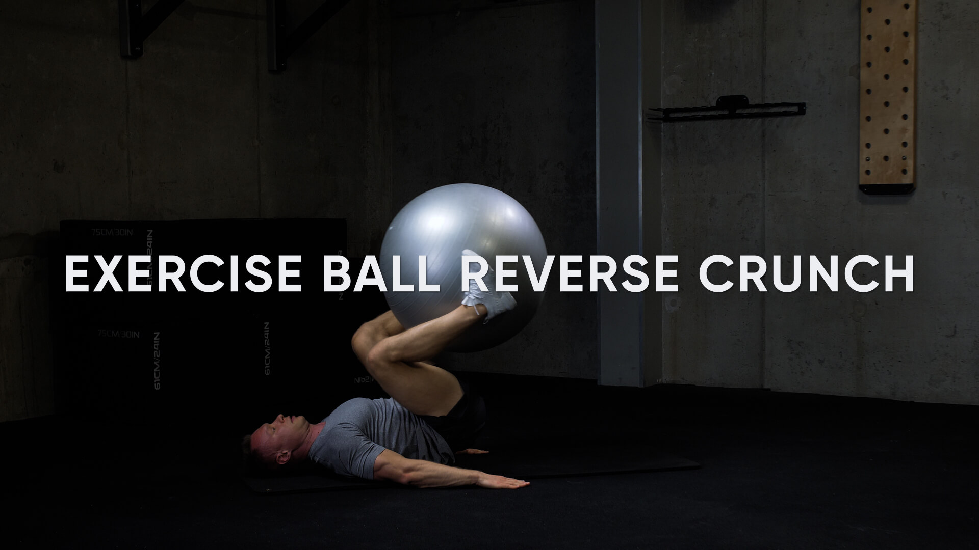 Exercise Ball Reverse Crunch
