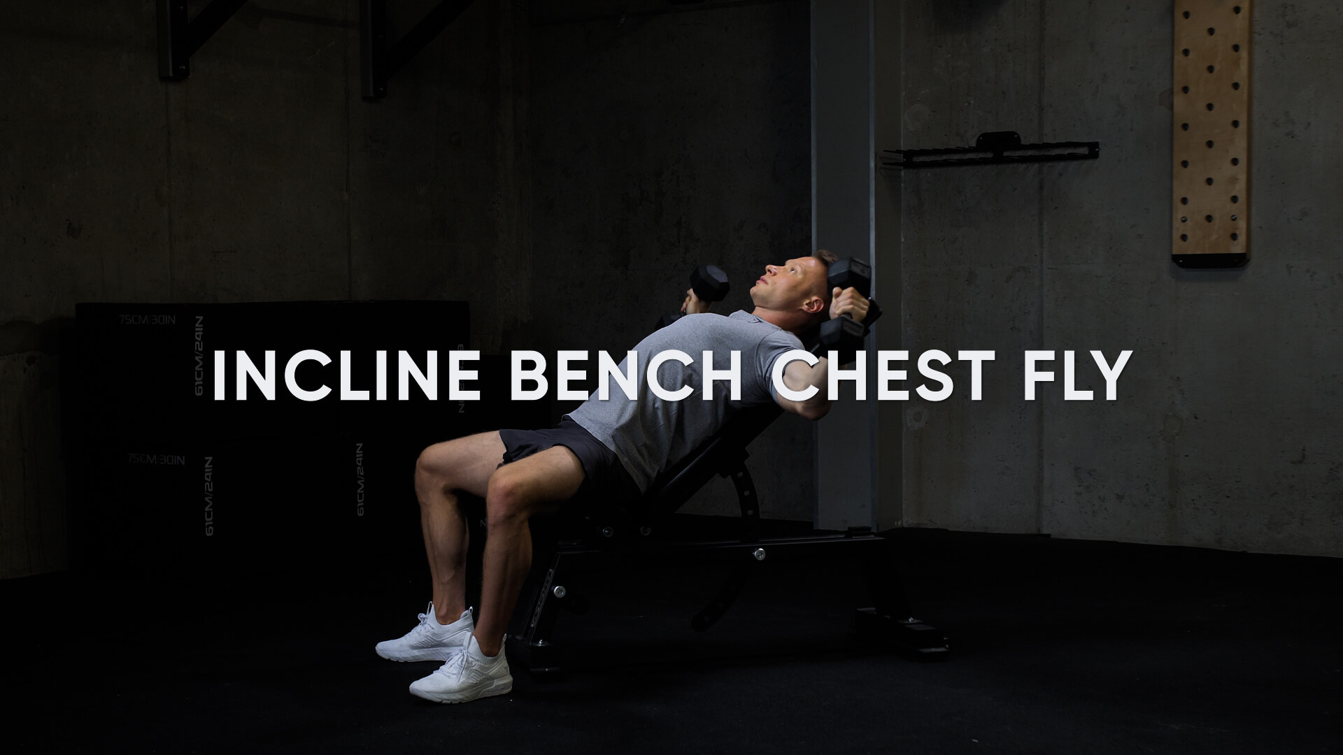 Incline Bench Chest Fly