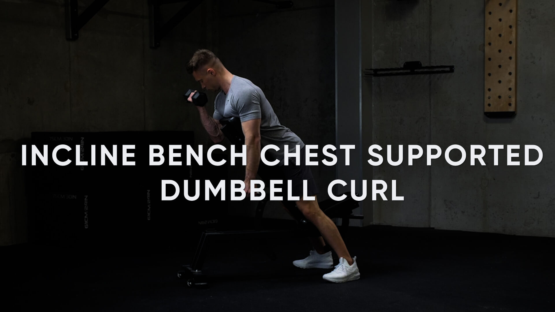 Incline Bench Chest Supported Dumbbell Curl