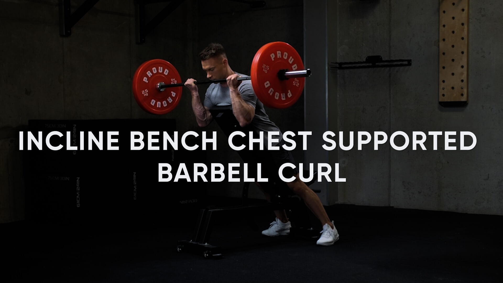 Incline Bench Chest Supported Barbell Curl