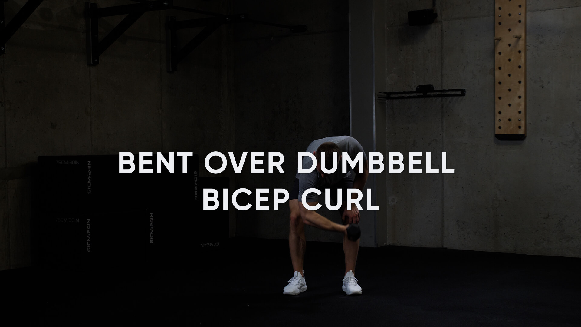 Bent Over Dumbbell Bicep Curl