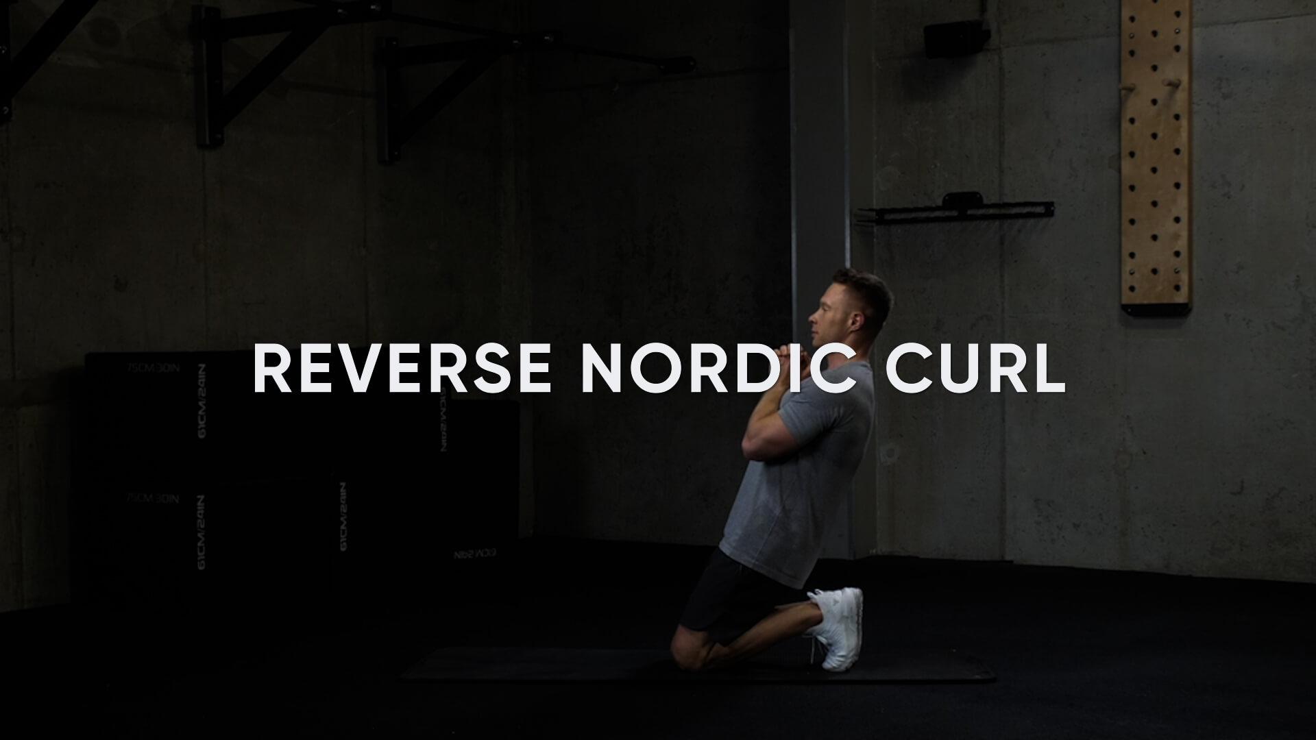 Reverse Nordic Curl