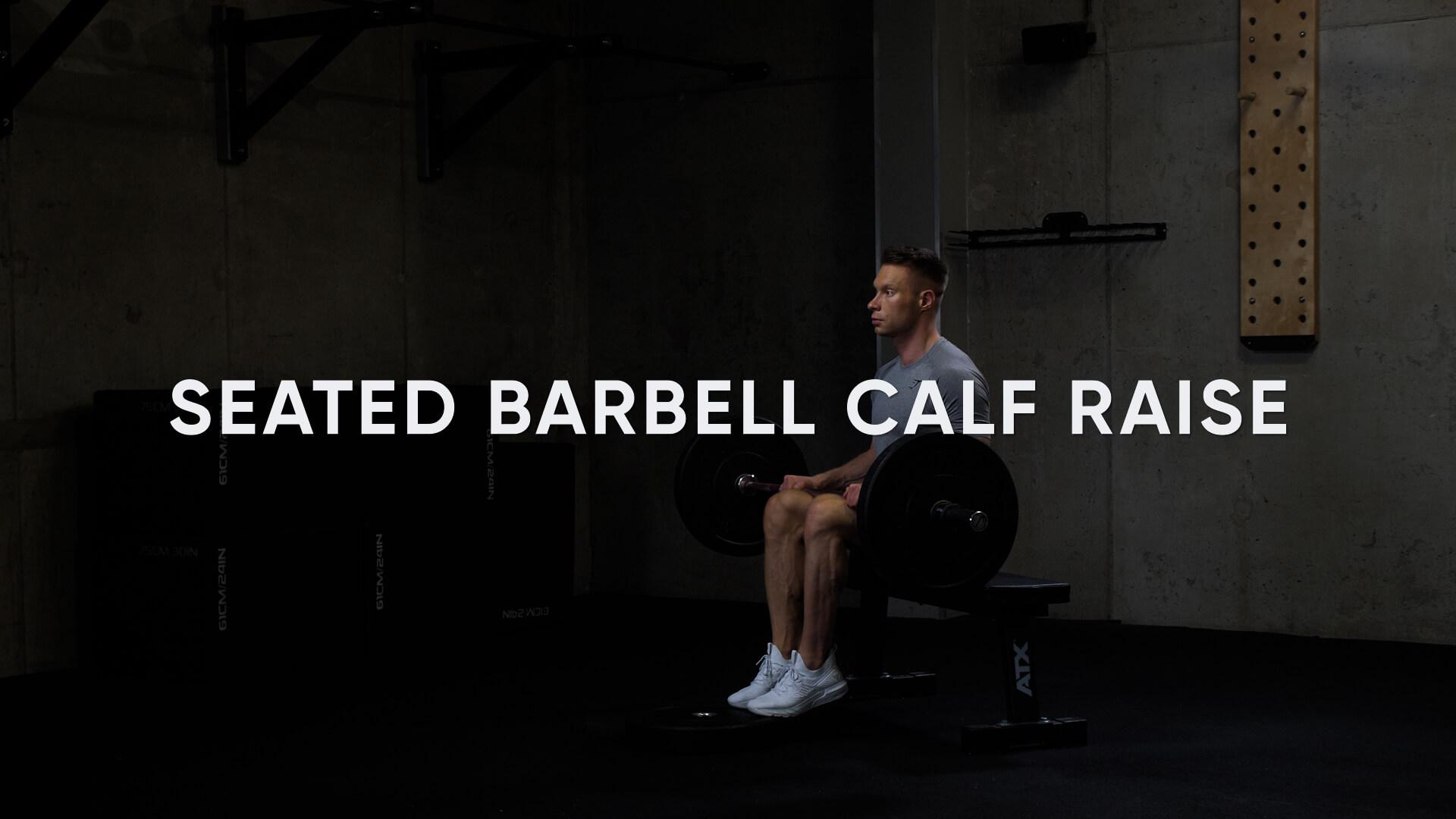 Seated Barbell Calf Raise