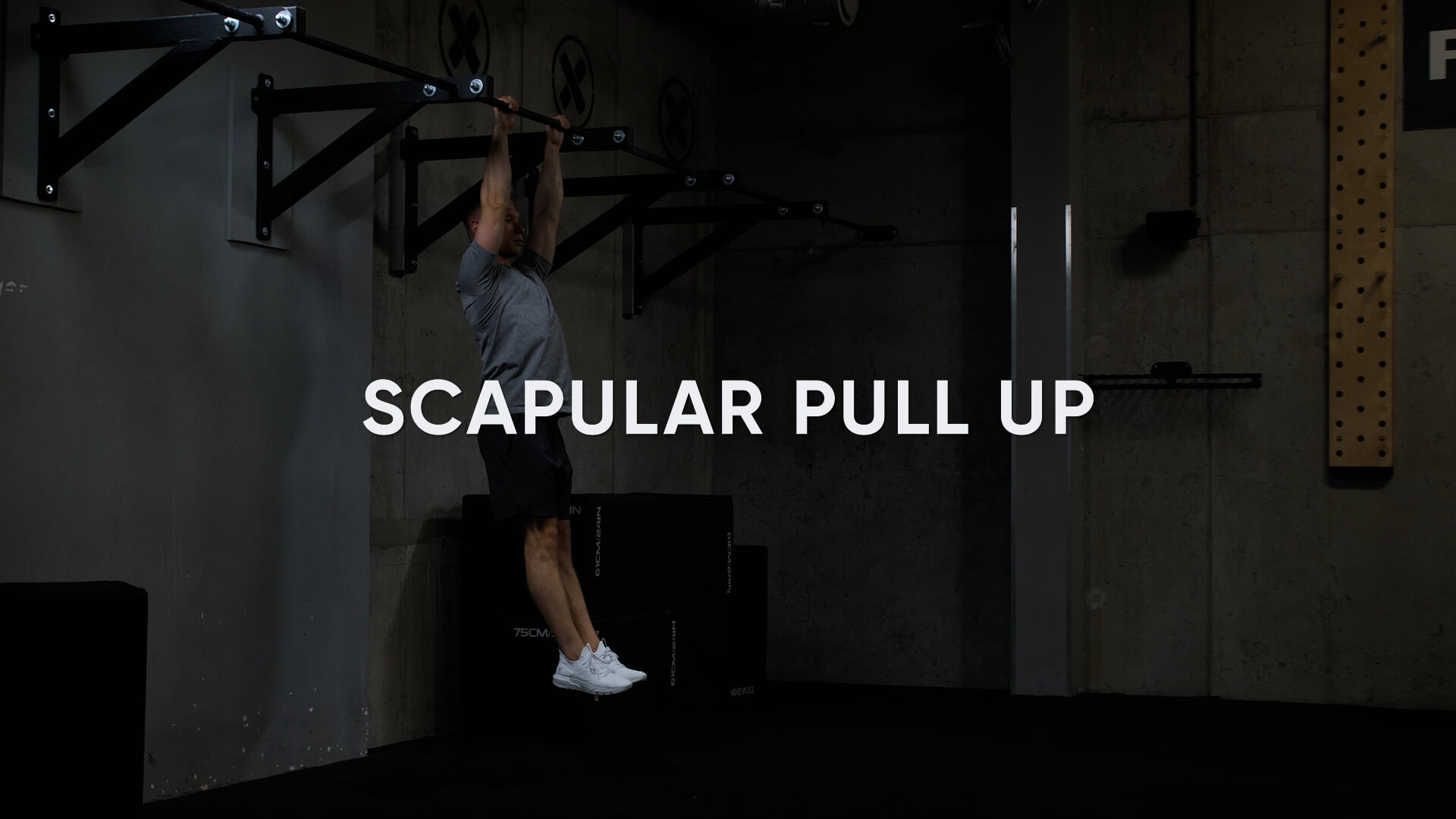 Scapular Pull Up