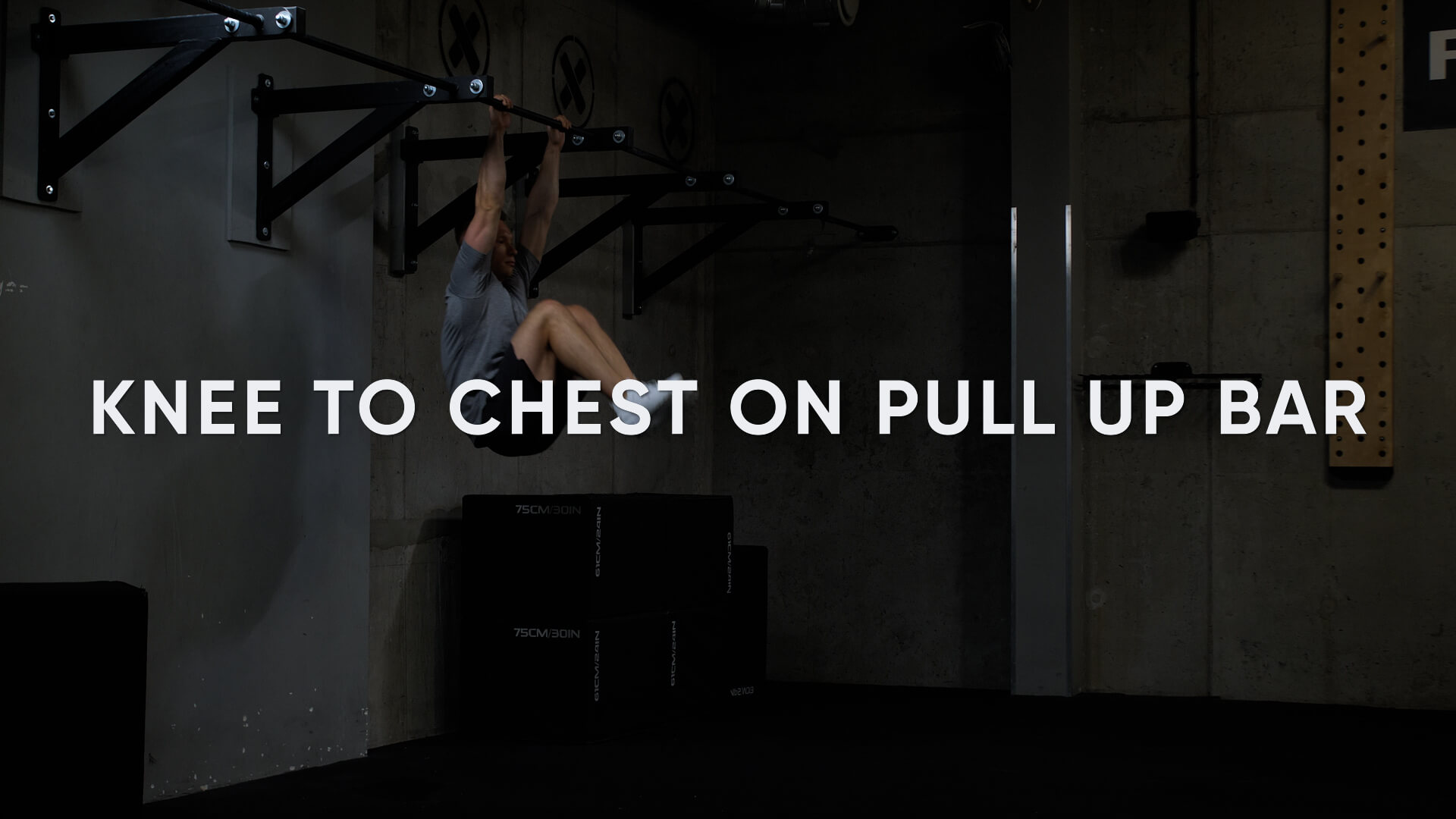Knee to Chest on Pull Up Bar