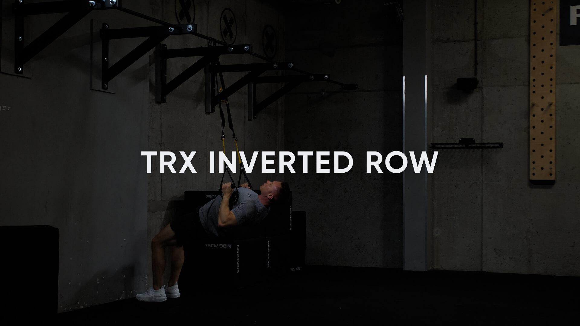 TRX Inverted Row 2