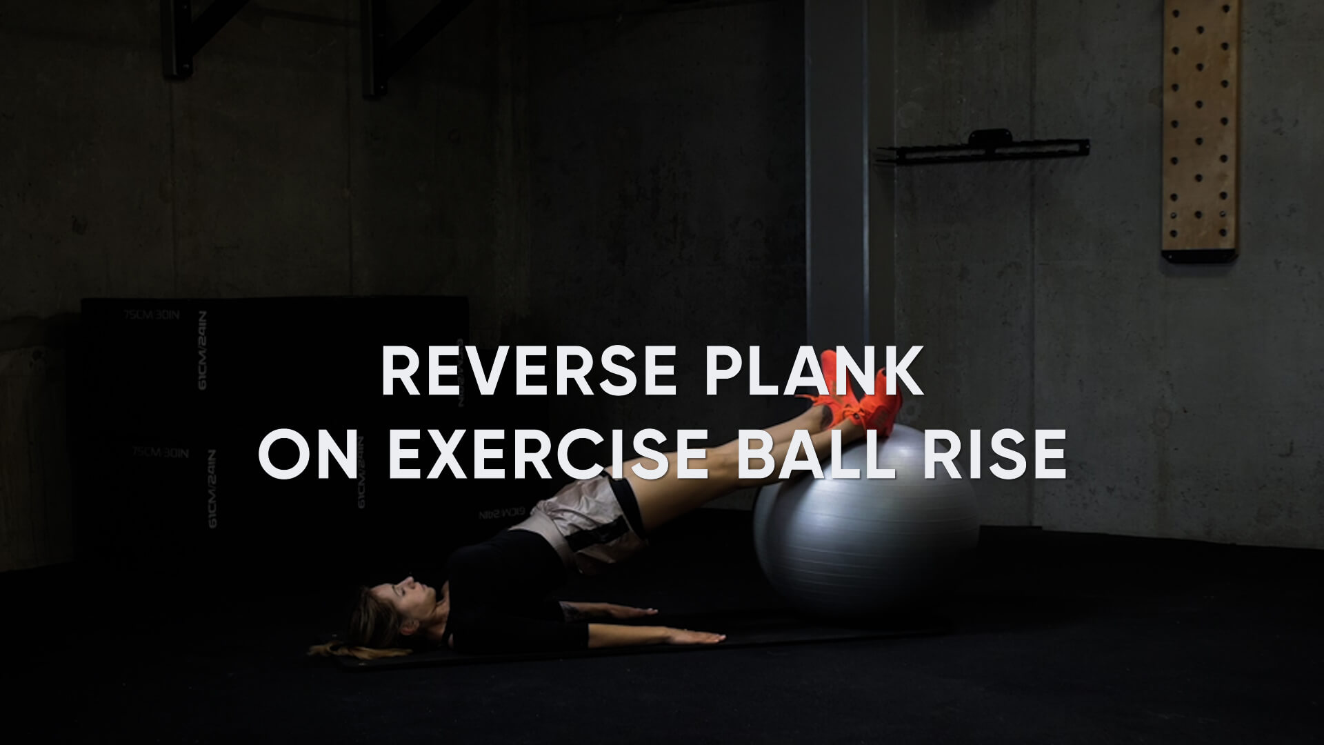 Reverse Plank on Exercise Ball Raise