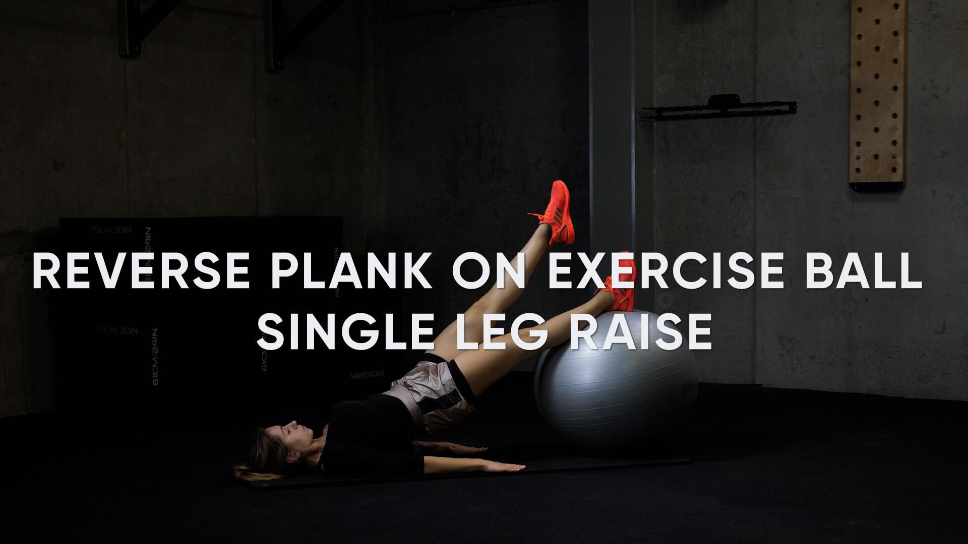 Reverse Plank on Exercise Ball Single Leg Raise