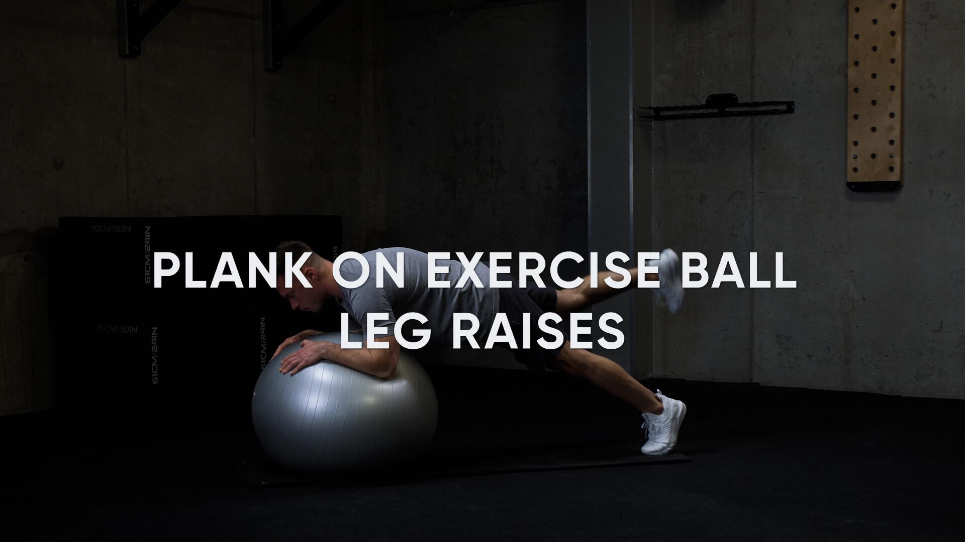 Plank on Exercise Ball Leg Raises