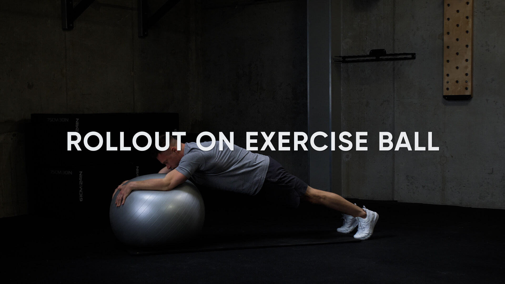 Roll Out on Exercise Ball